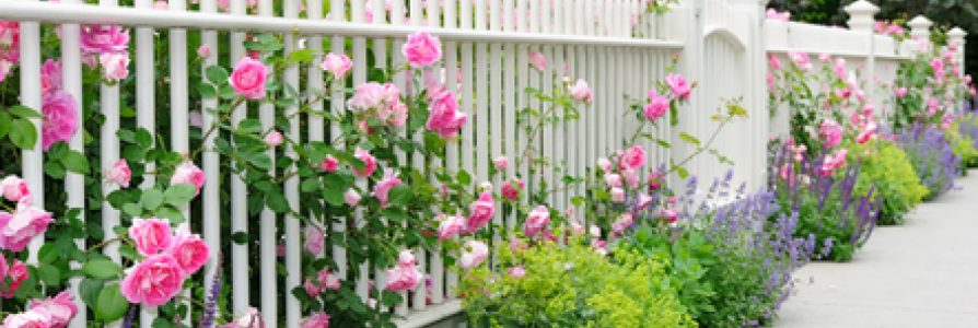 Residential Fencing Options For Your Home